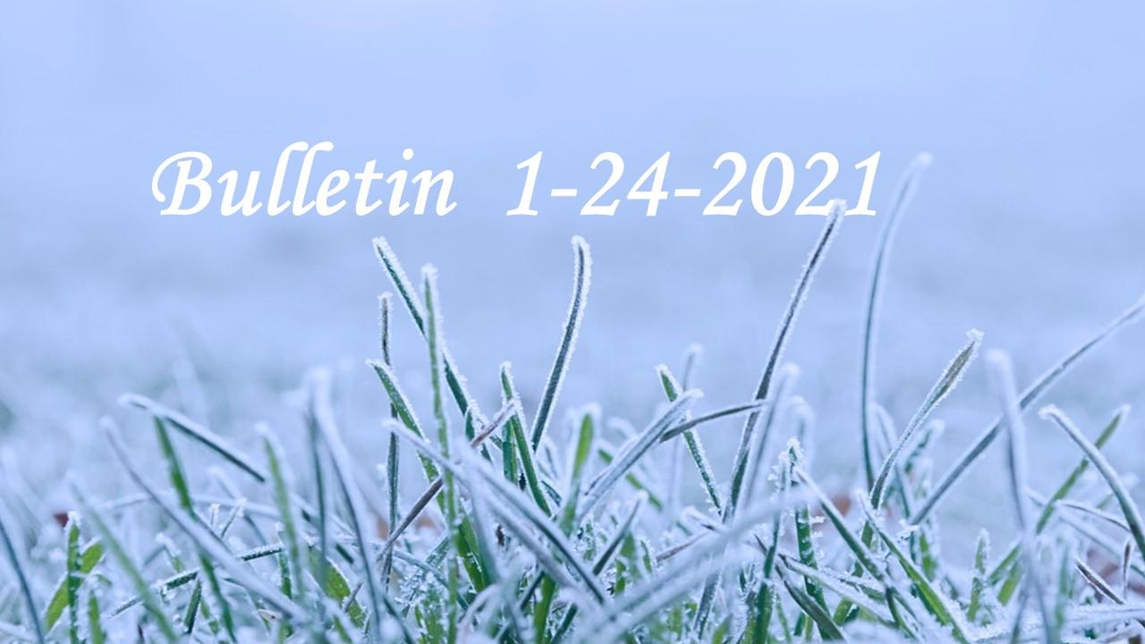 Bulletin 1-24-21pg.4